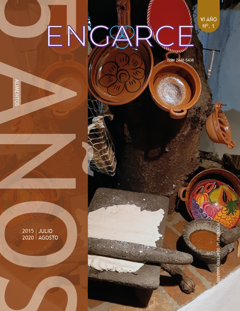 revista-engarce